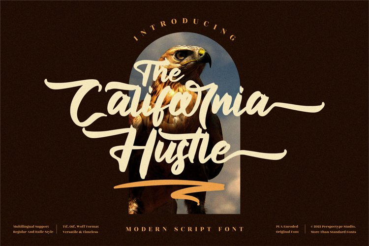 The California Hustle - Modern Script Font example image 1