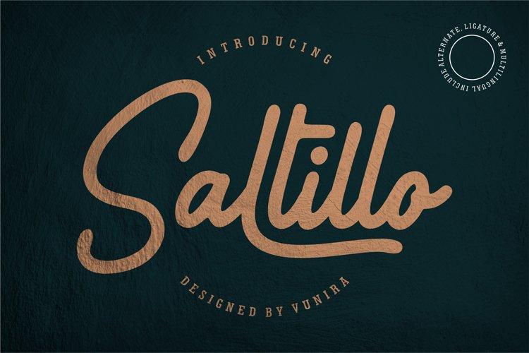 Saltillo | Script Font example image 1