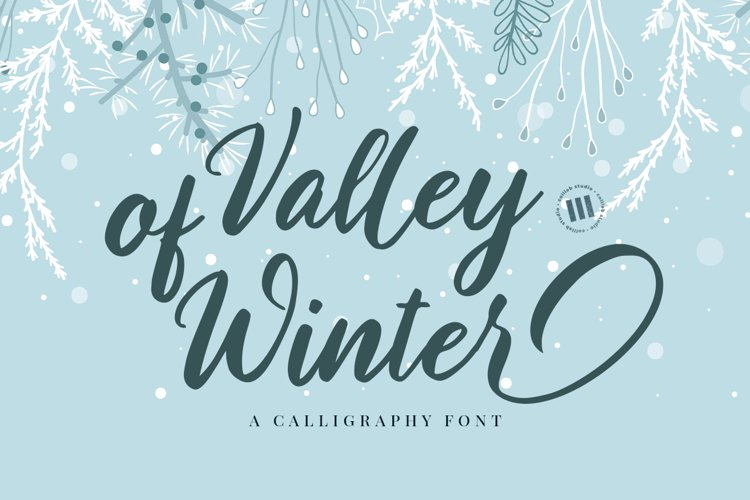 Valley of Winter- A Calligraphy Font example image 1