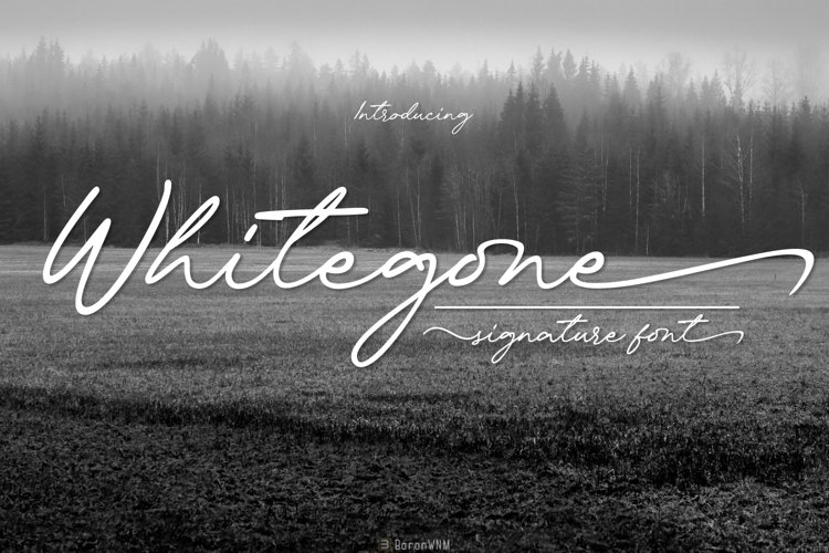 Whitegone example image 1