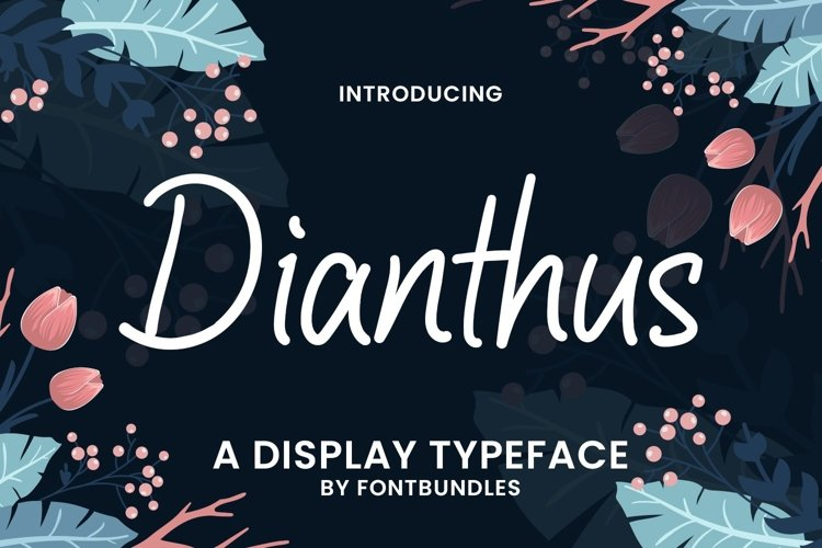 Web Font Dianthus example image 1