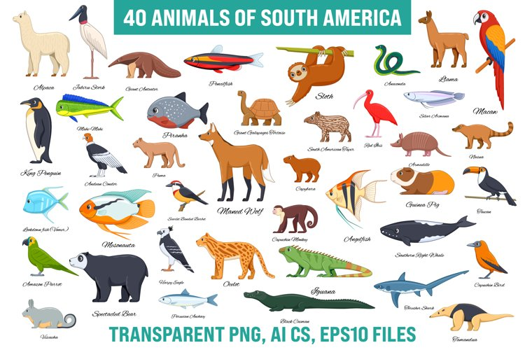 Animals of South America Collection example image 1