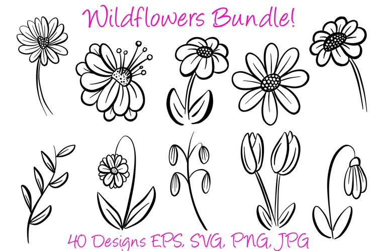 Mega Bundle Outline Wildflower Illustration Collection example image 1