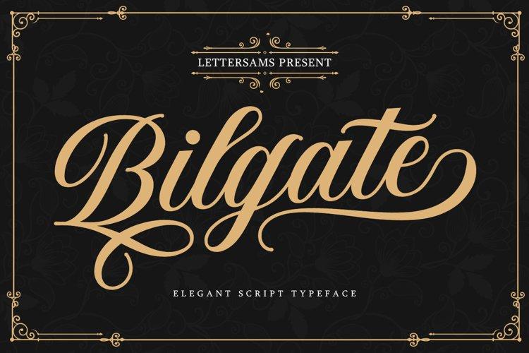 Bilgate Script example image 1