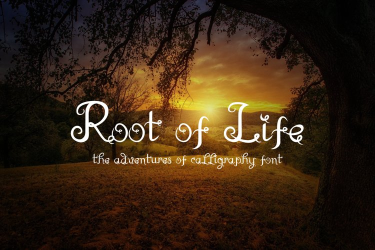 Root of Life example image 1