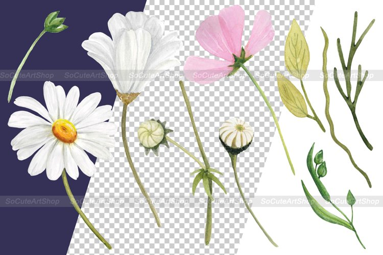 Watercolor Wildflower PNG Summer clipart, Floral bouquet png example 2