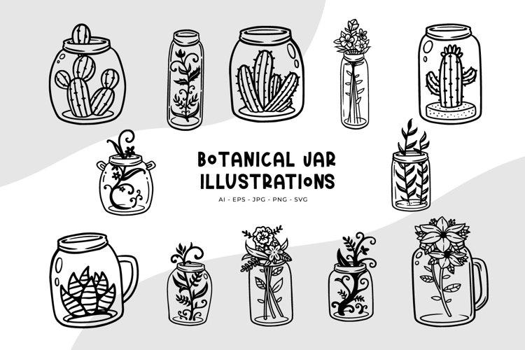 Botanical Jar Illustrations