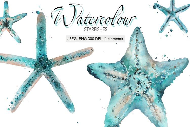 Star starfish Sea creatures Costal Underwater Ocean animals