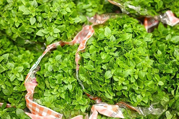basil bundles of fresh green medicinal plants in a package example image 1