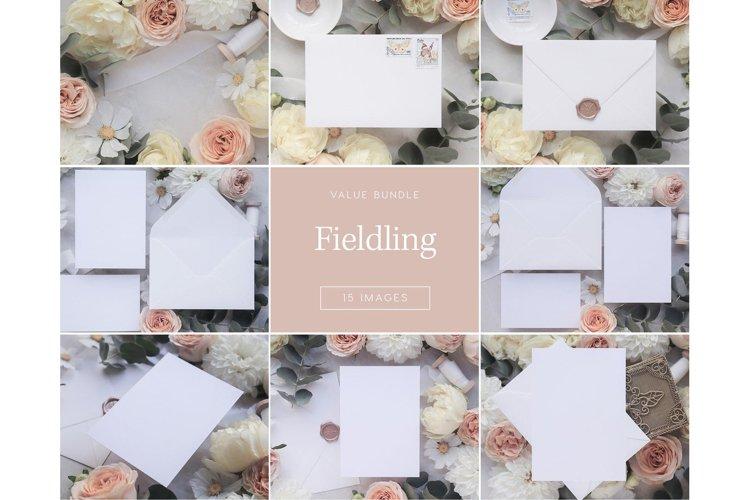 Fieldling Bundle - 51 Images