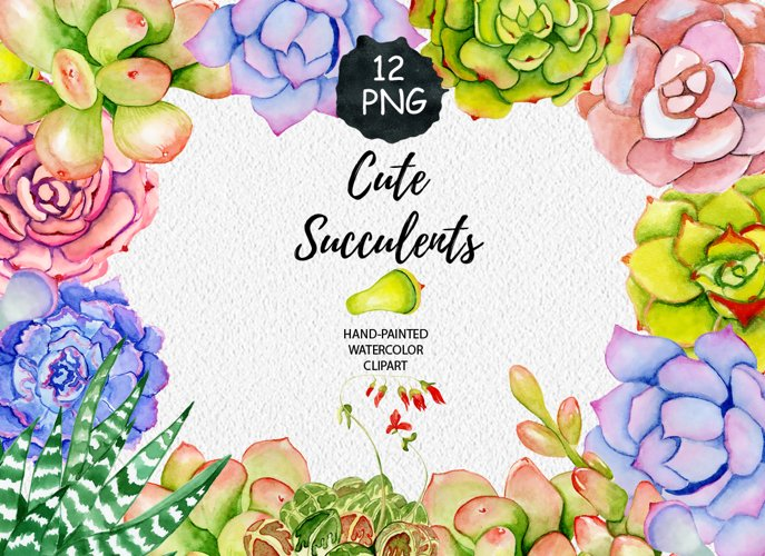 Succulents watercolor clipart