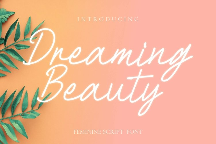 Web Font Dreaming Beauty Font example image 1