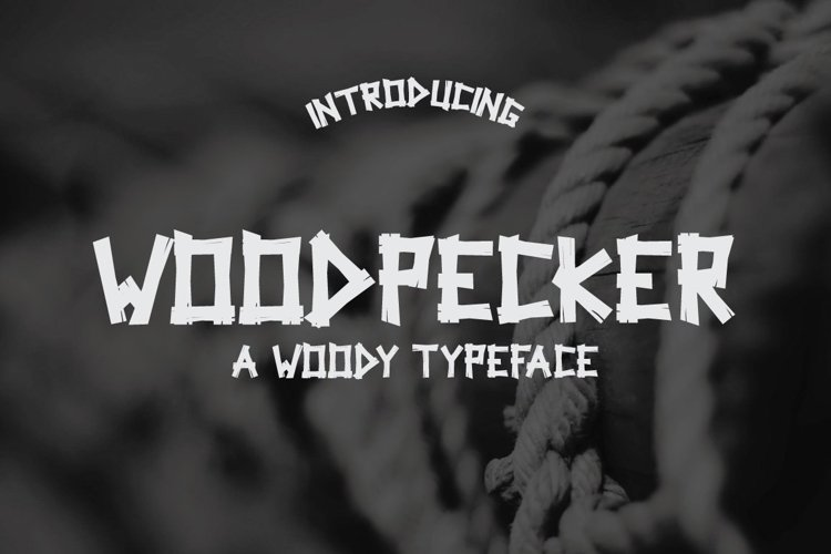 Web Font Woodpecker Typeface example image 1