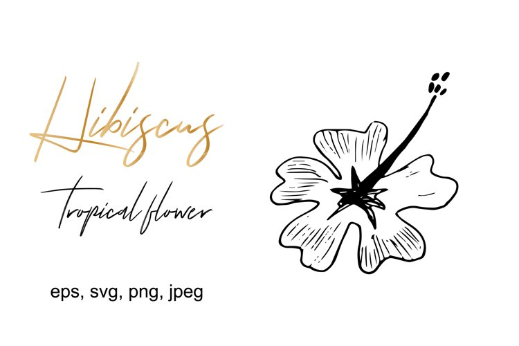 Hibiscus Flower SVG Cut File example image 1
