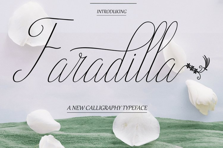 Faradilla Script example image 1