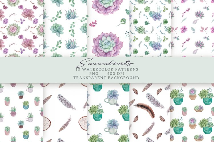 Succulents Seamless Patterns example image 1
