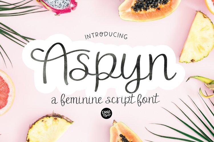 ASPYN a Feminine Script Font example image 1