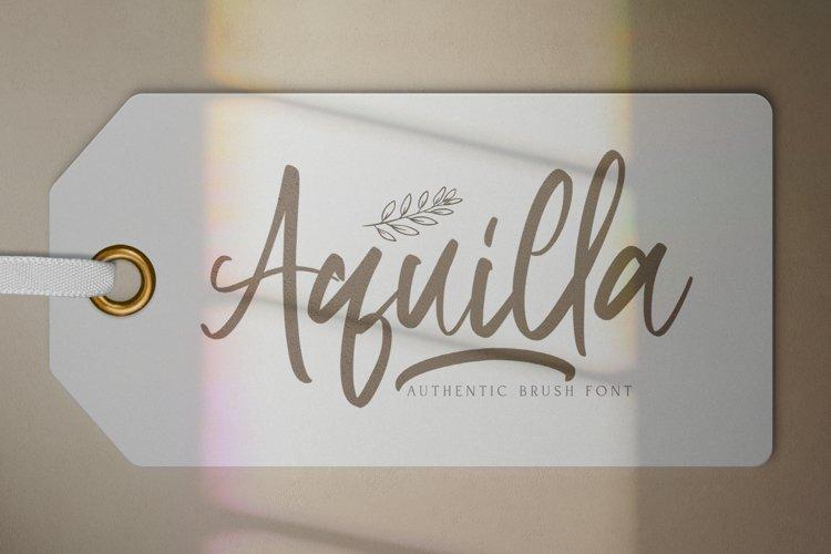 Aquilla - Brush Script Font example image 1
