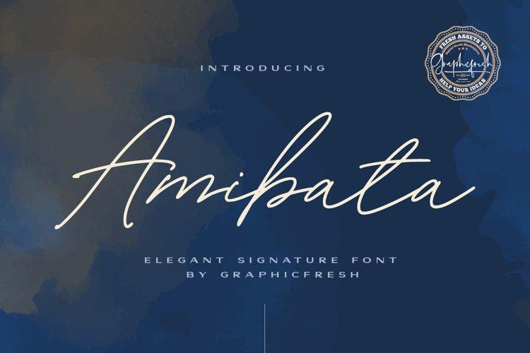 Amibata - Elegant Signature Font example image 1