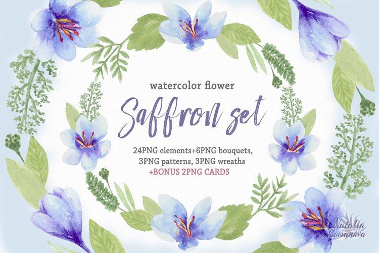 Saffron set. Watercolor.