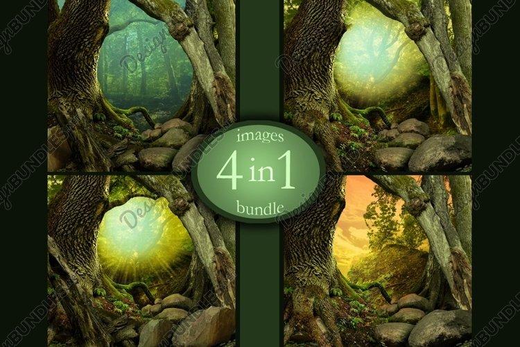 Digital fairytale forest backgrounds Bundle of 4 images