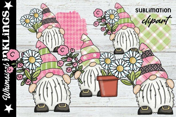 Pretty Daisy Gnomes Sublimation Clipart