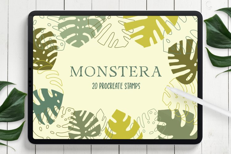 Monstera Leaves Procreate Stamp Brushes