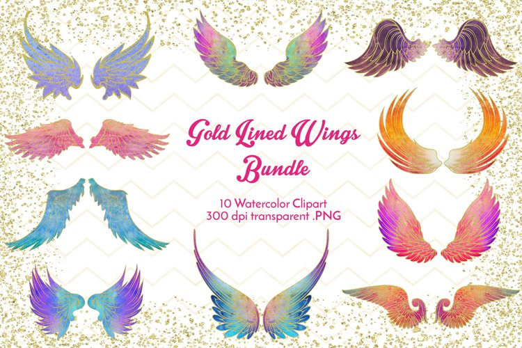 Gold Lined Wings Bundle