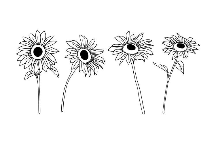Sunflower Silhouettes