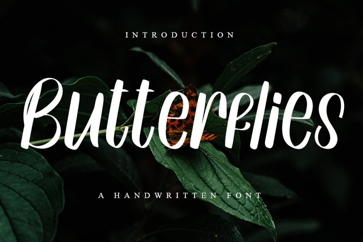 Butterflies - A Handwritten Font example image 1