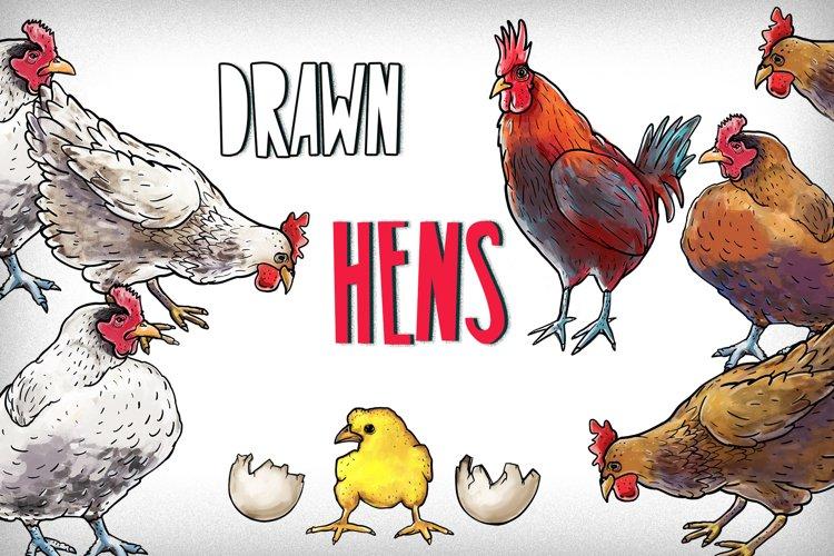 Drawn hens