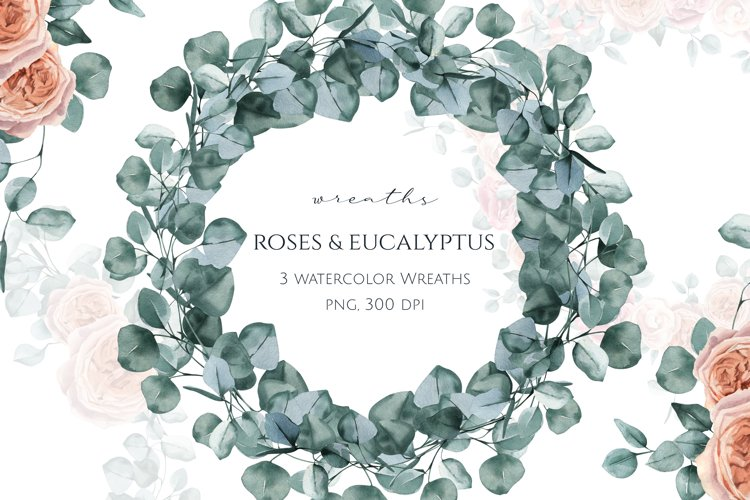 Eucalyptus and Roses Watercolor Wreaths
