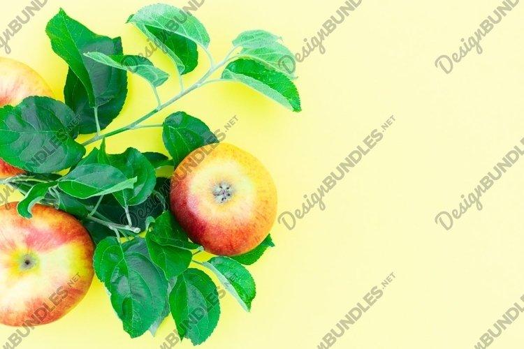 fresh ripe apples example image 1