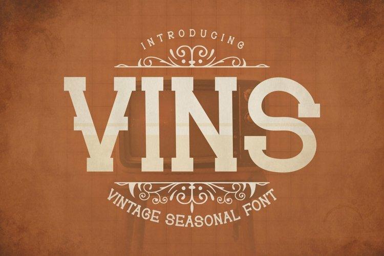 Web Font Vins Font example image 1