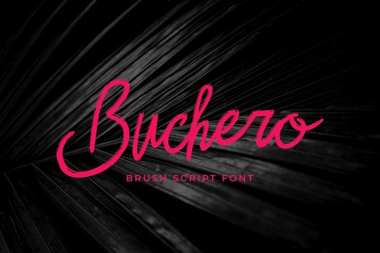 Buchero Brush Script Font example image 1