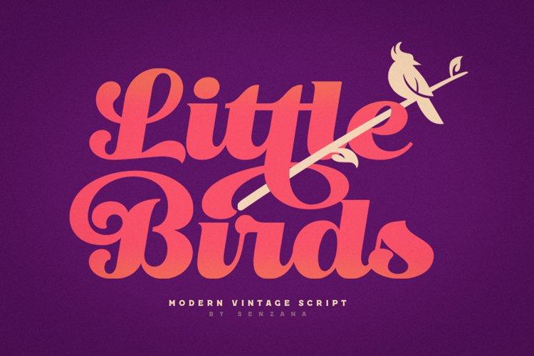 Little Bird Script example image 1