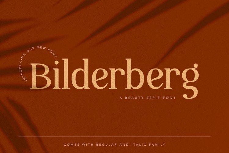 Bilderberg Beauty Serif Font example image 1