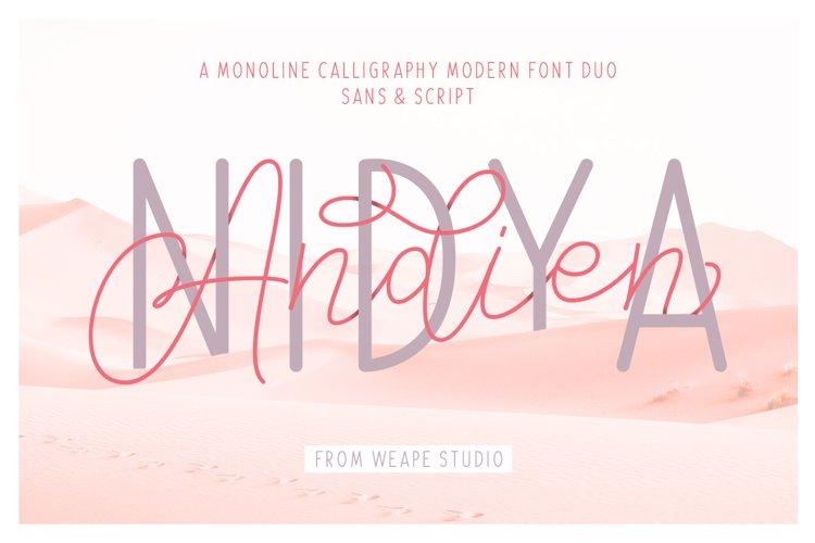 Andien Nidya - Script & Sans example image 1