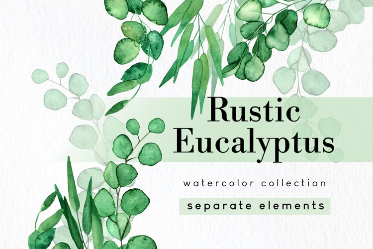 Christmas greenery eucalyptus clipart with wreath and drop