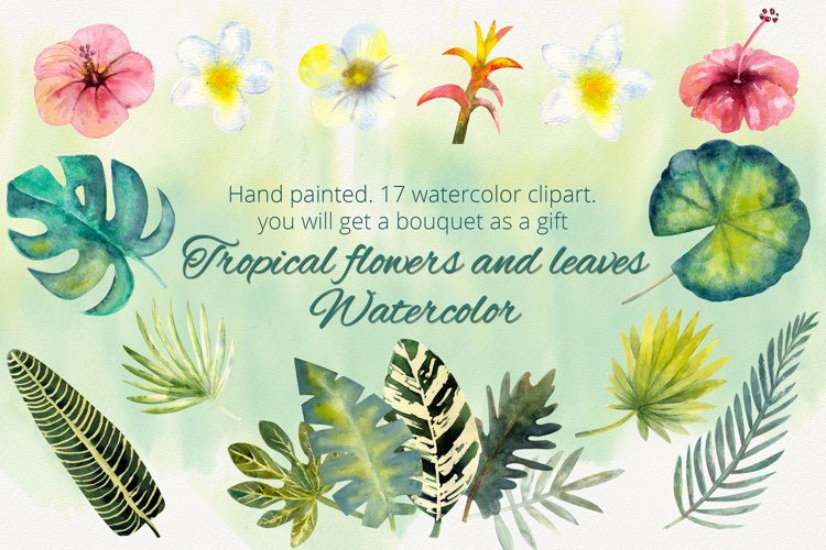 Tropical flowers and leaves. Watercolor clipart example image 1