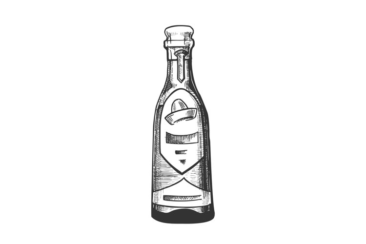 Traditional Mexican Tequila Drink Bottle Vector example image 1