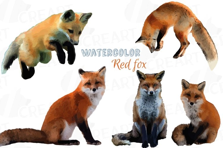 Red Fox Watercolor clip art, woodland watercolor fox, png example image 1