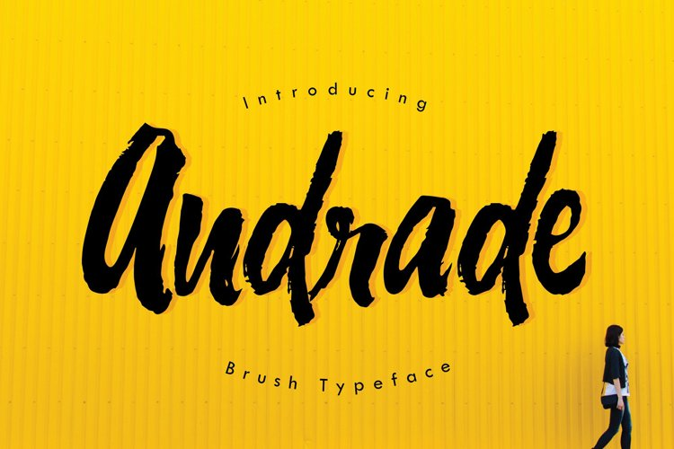 Web Font Andrade Typeface example image 1