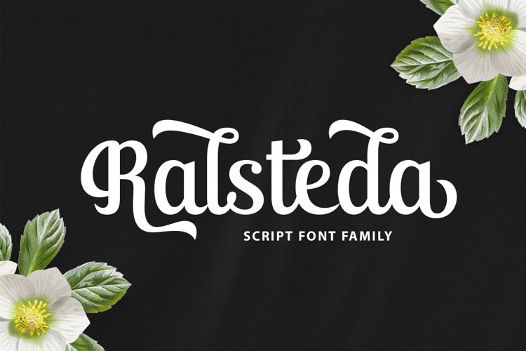 Ralsteda Script Font Family example image 1