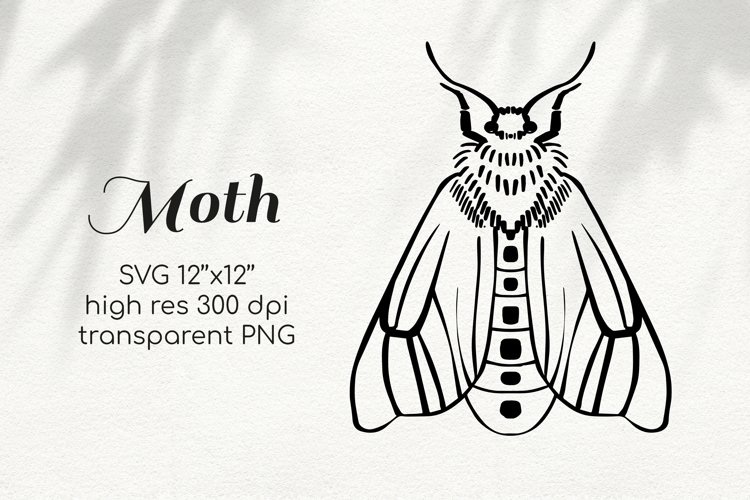 SVG PNG Moth line art clipart for sublimation and crafts