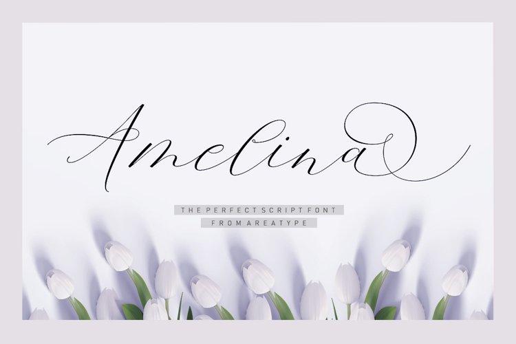 Amelina Script example image 1