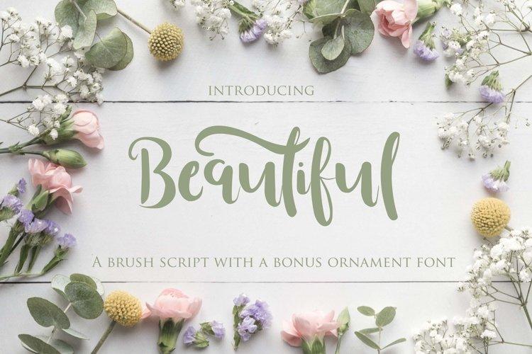 Beautiful Font with Bonus Ornament font
