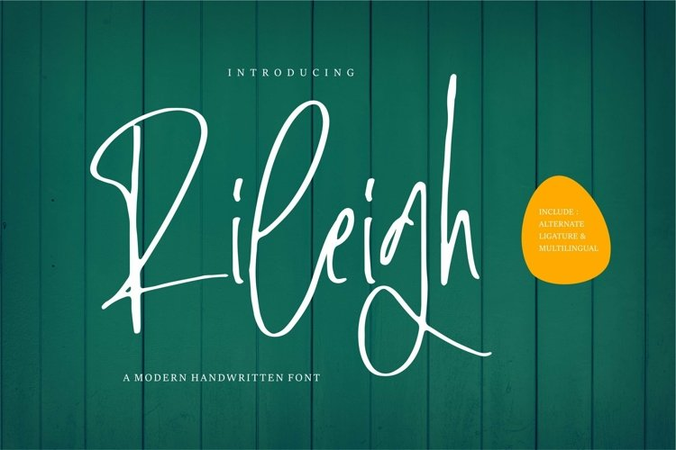 Web Font Rileigh - A Modern Signature Font example image 1