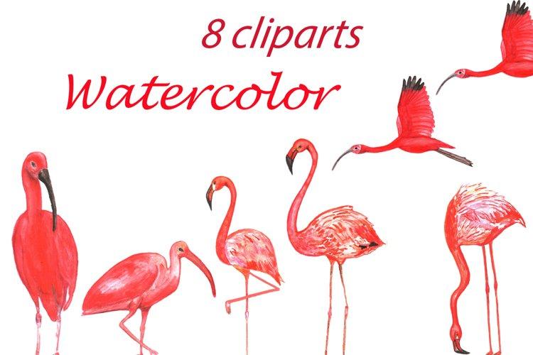 Watercolor birds Clip Art example image 1