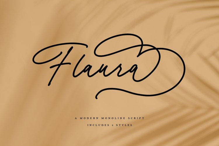 Flaura - A Modern Monoline Script example image 1